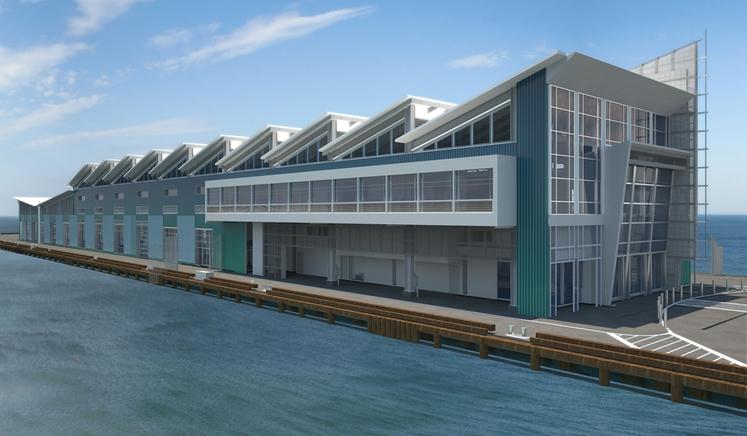 new cruise ship terminal